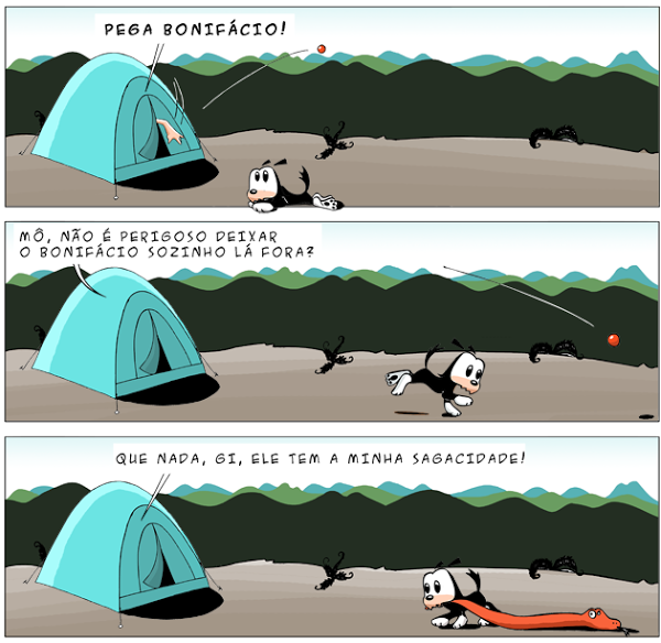 boni_tira